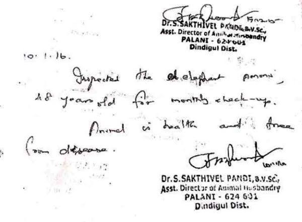 Ammu - Dr.Sakthivel's Certificate-1