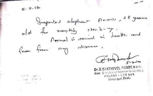 Ammu - Dr.Sakthivel's Certificate-2