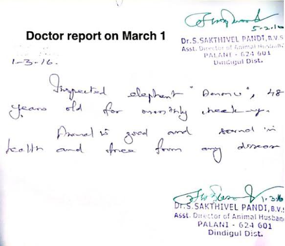 Ammu - Dr.Sakthivel's Certificate-3