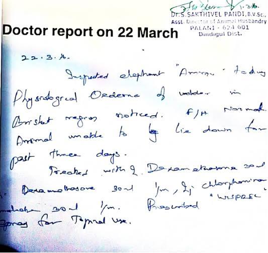 Ammu - Dr.Sakthivel's Certificate-4