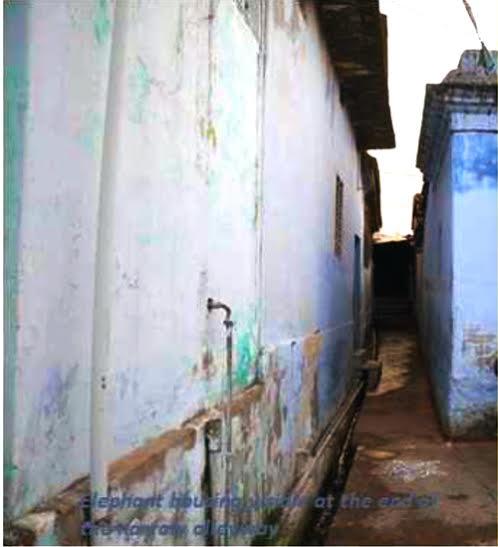 Ammu - Narrow path to her room